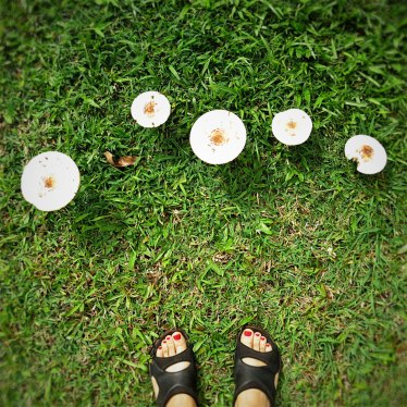 WEB_kapaka_mushroomfeet